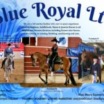Jun 2018: Blue Royal Ltd