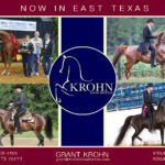 May 2018: Krohn Show Horses