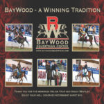 Nov 2018: BayWood Equestrian