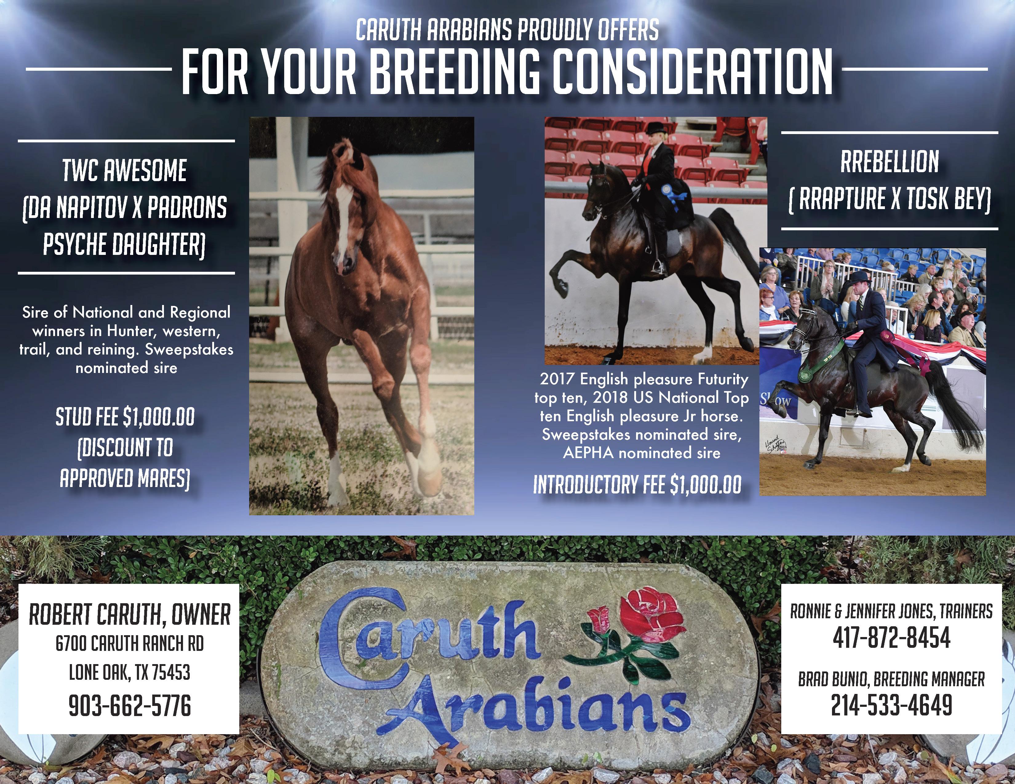 2019 NTAHC Calendar · North Texas Arabian Horse Club (NTAHC)